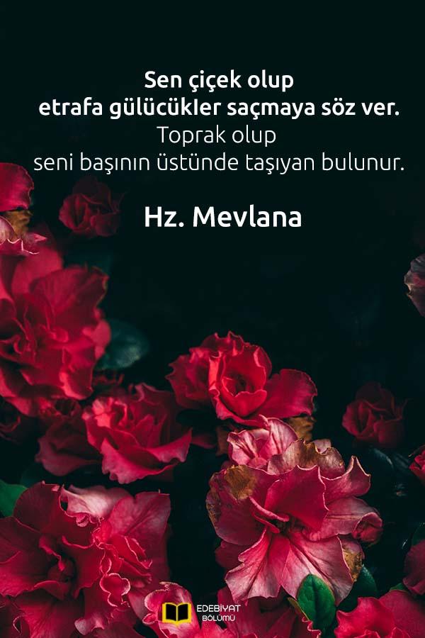 Mevlana-Çiçek-Sözleri