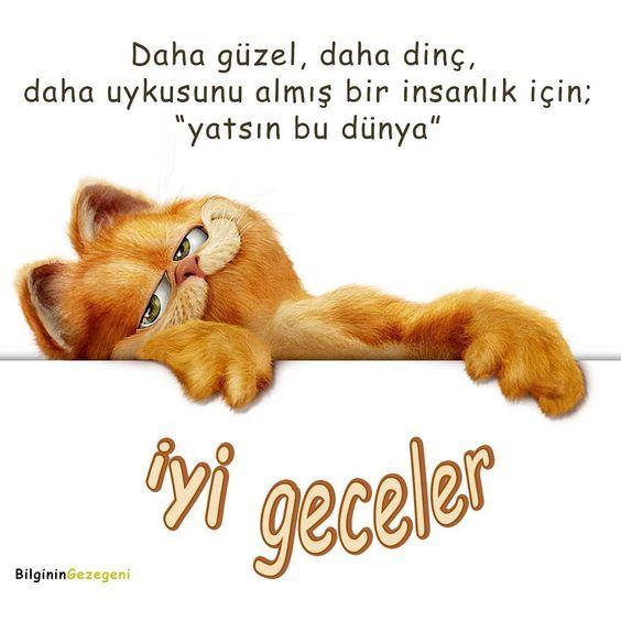 İyi-Geceler-Mesajları-Garfield
