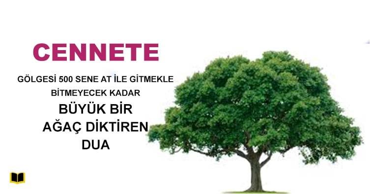 Cennete-Ağaç-Diktiren-Dua